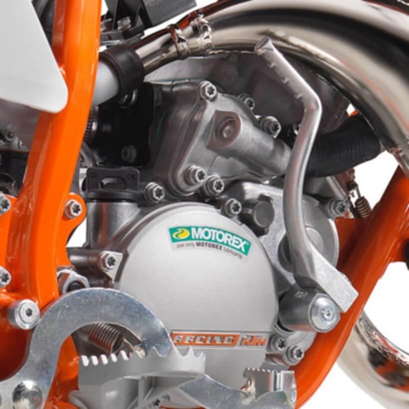 2019 KTM 50 SX Mini for sale at TeamMoto New Bikes