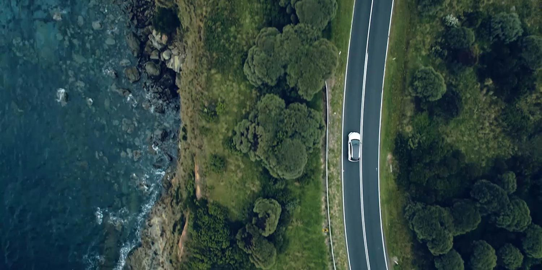 leaf-ocean-road