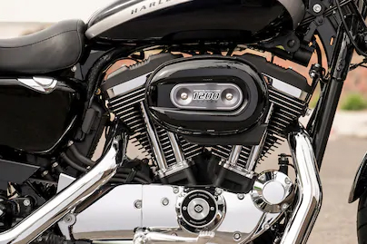 1200cc Air-Cooled Evolution™ Engine