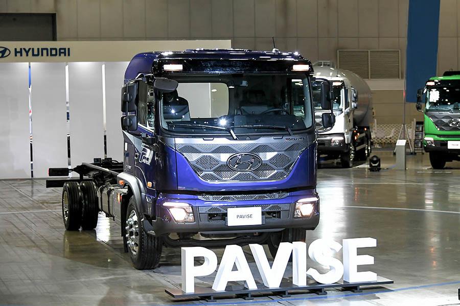 Pavise-1