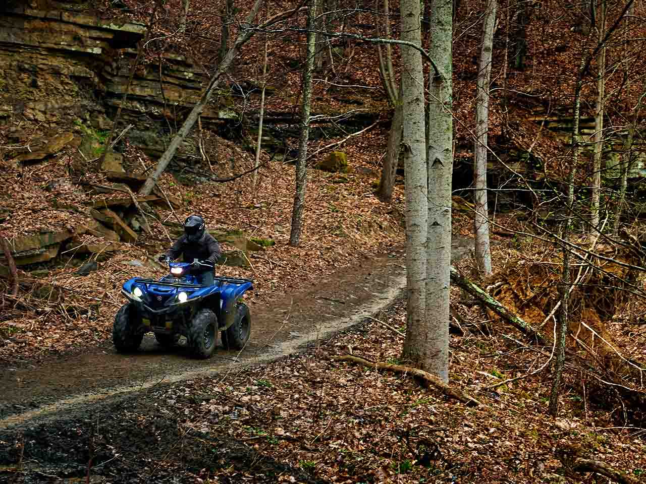 2019 Yamaha Grizzly 700 Gallery 3