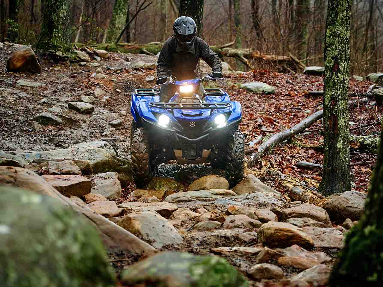 2019 Yamaha Grizzly 700 Gallery 4