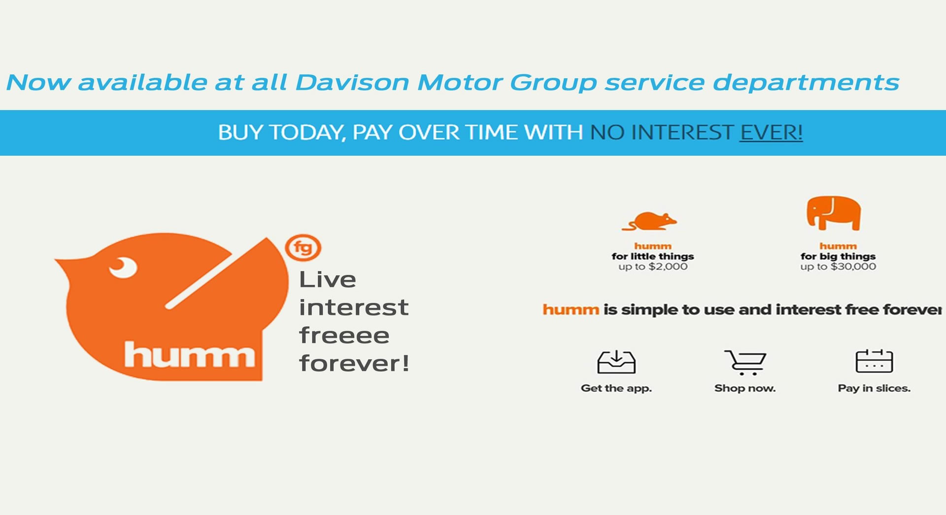 Davison Suzuki Live Interest Free Forever with Humm