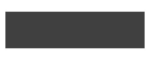 Village Holden Logo