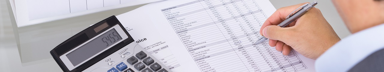 Village Motors | Finance Calculator