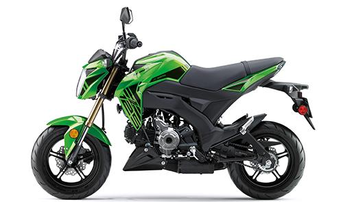 Kawasaki - 2019 Z125 Pro