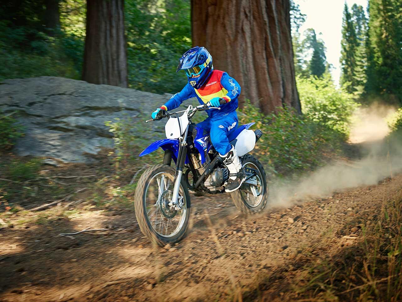 2020 Yamaha TT-R125LWE Gallery 2
