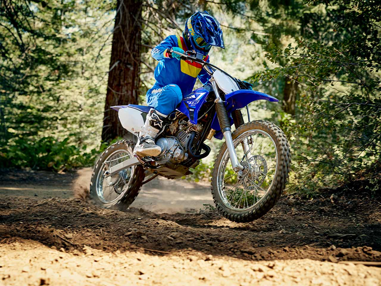2020 Yamaha TT-R125LWE Gallery 4