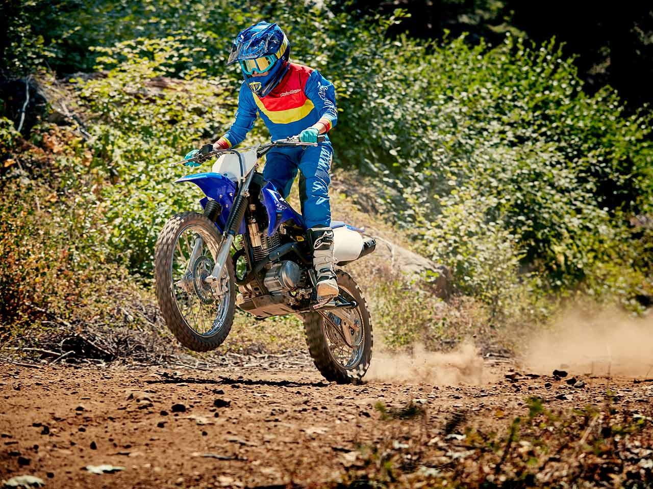 2020 Yamaha TT-R125LWE Gallery 5