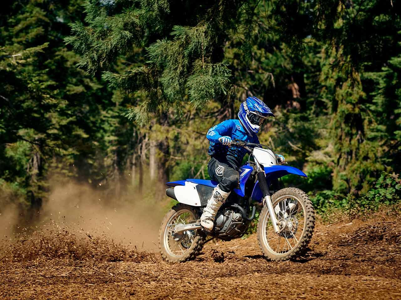 2020 Yamaha TT-R230 Gallery 4