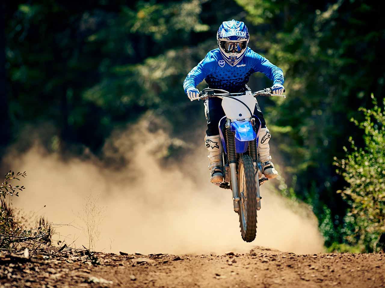 2020 Yamaha TT-R230 Gallery 6