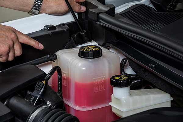LDV Engine Coolant