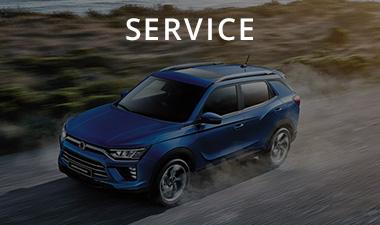 Davison Motors Service