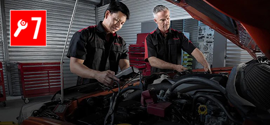 7 Years Capped Price Servicing