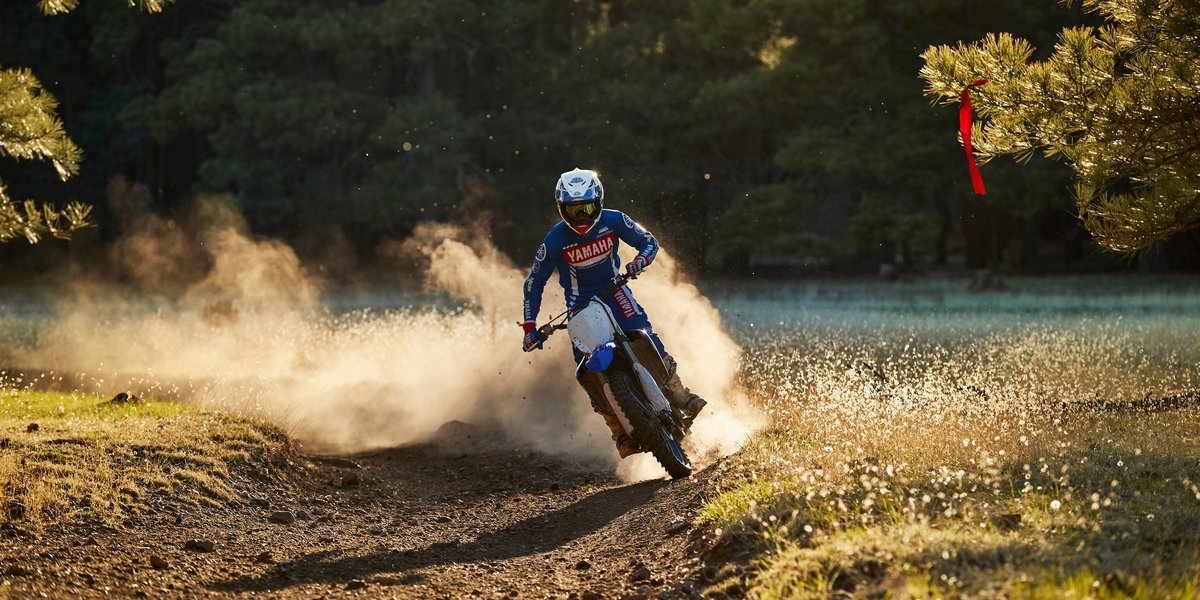 blog large image - Price drop on the 2019 Yamaha YZ450F