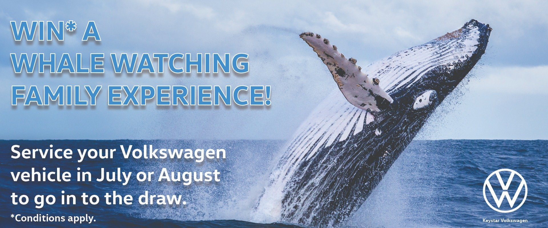 WIN* a Whale Watching Family Pass