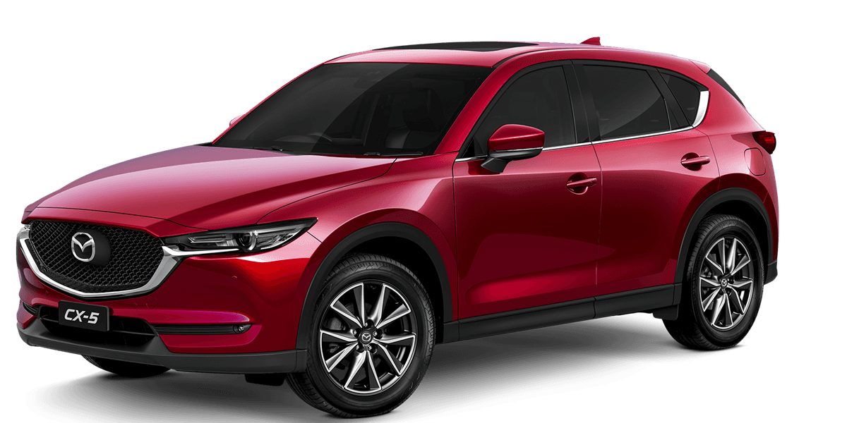 blog large image - How to Remove Bird Poo and Sap From Your New Mazda CX 5