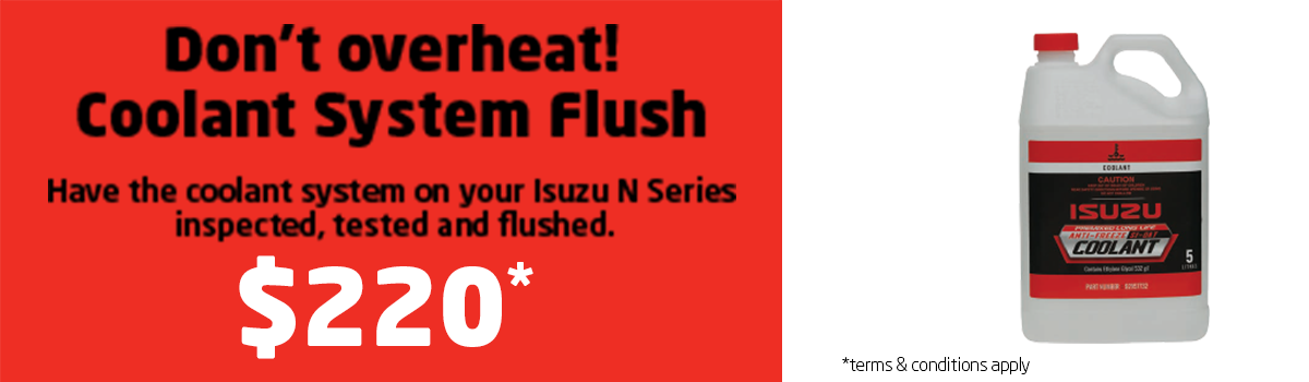 Coolant System Flush Large Image