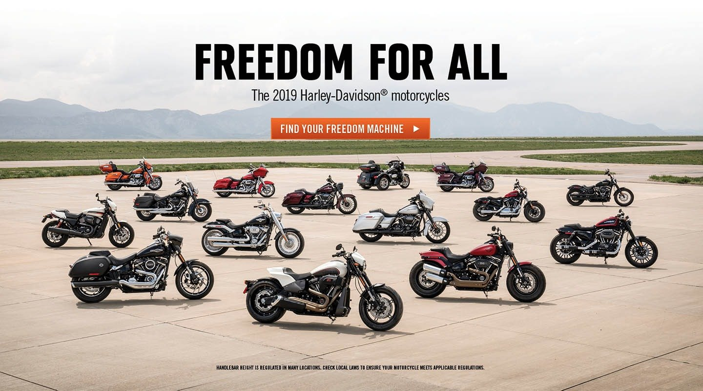 The 2019 Harley-Davidson Models