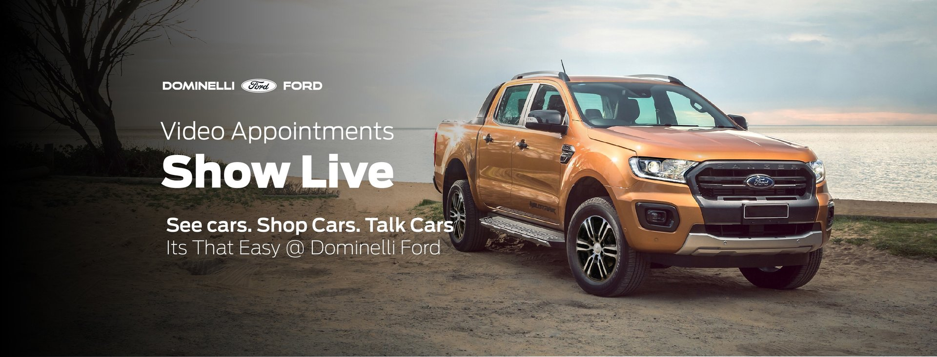Buy Online with Dominelli Ford