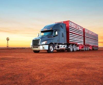 Freightliner Australian Cascadia image