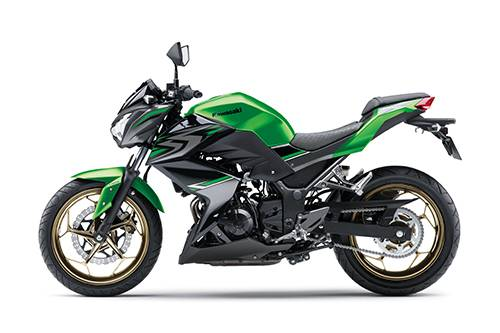 2017 Z300 Feature 01