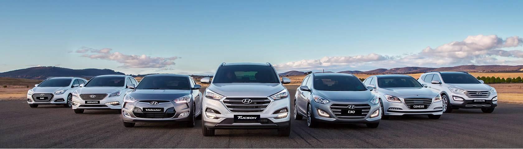 Hyundai Fleet