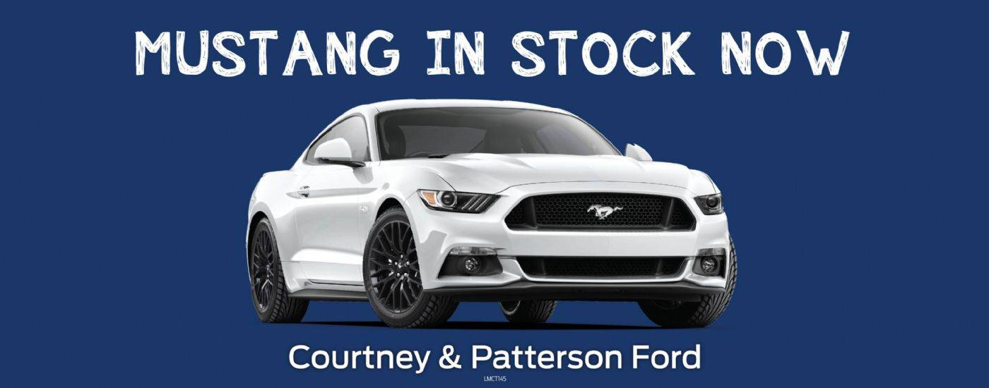 Courtney & Paterson Ford Mustang