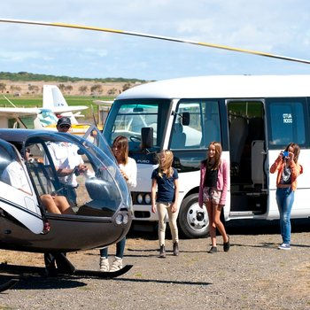 Rosa 25 Seater Runout Small Image
