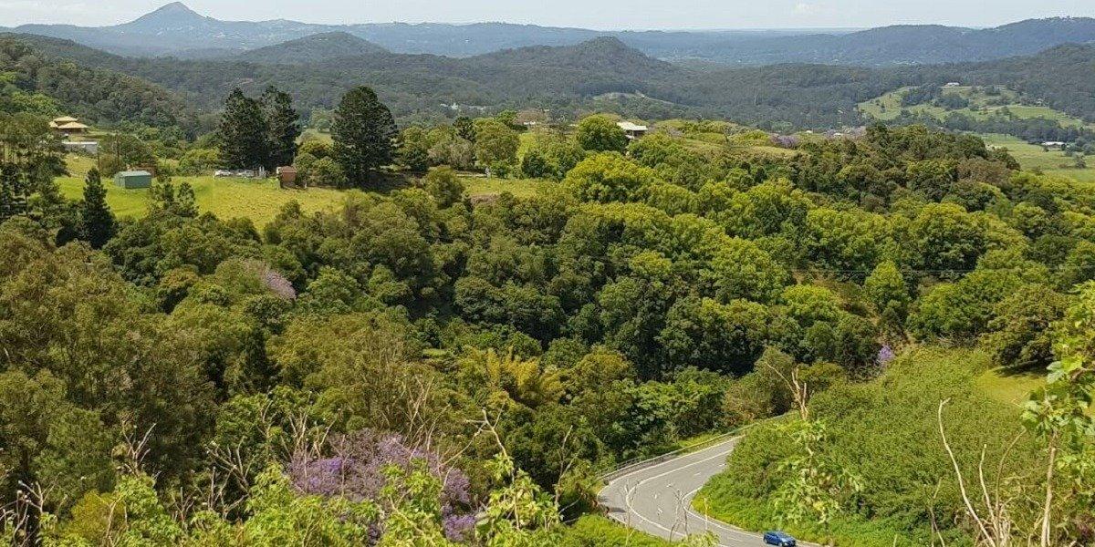 blog large image - Sunshine Coast Hinterland Covid-Safe Days Out