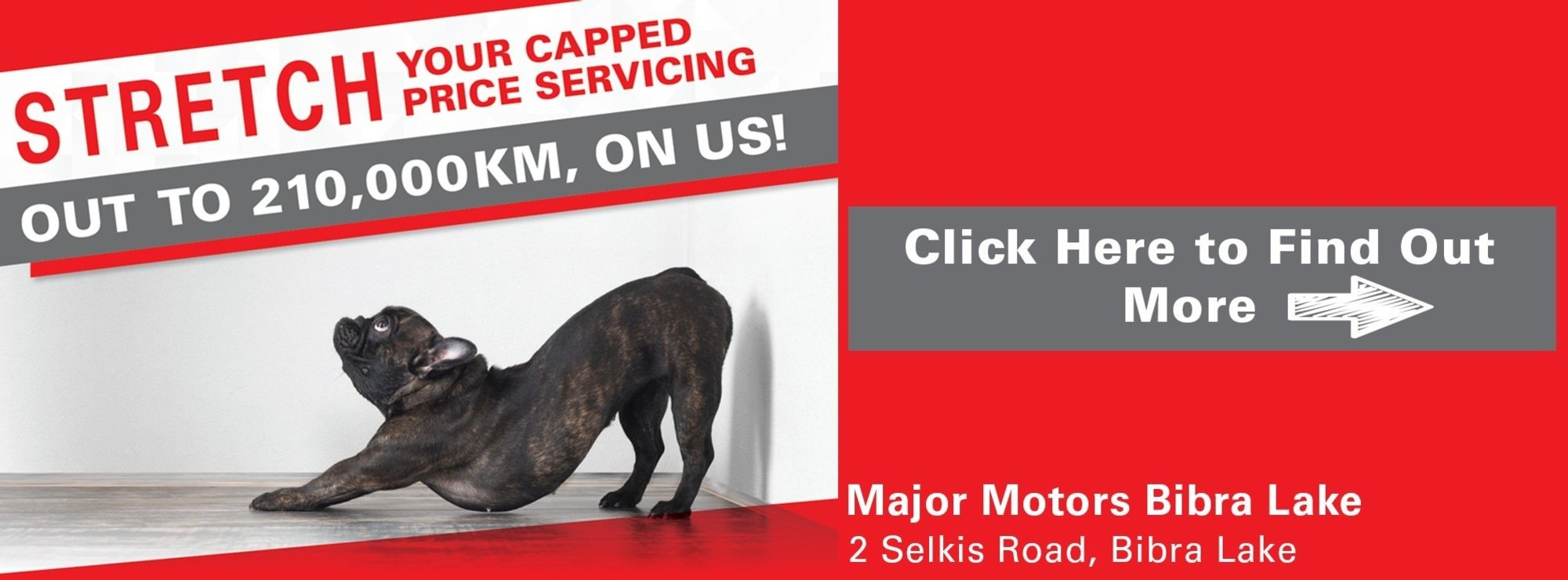 Capped Price Servicing Special