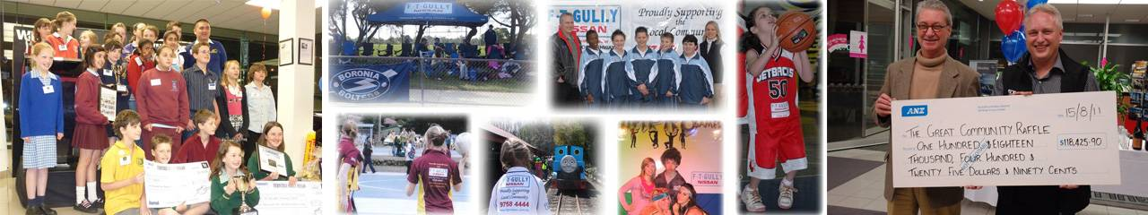 Ferntree Gully Motor Group Banner