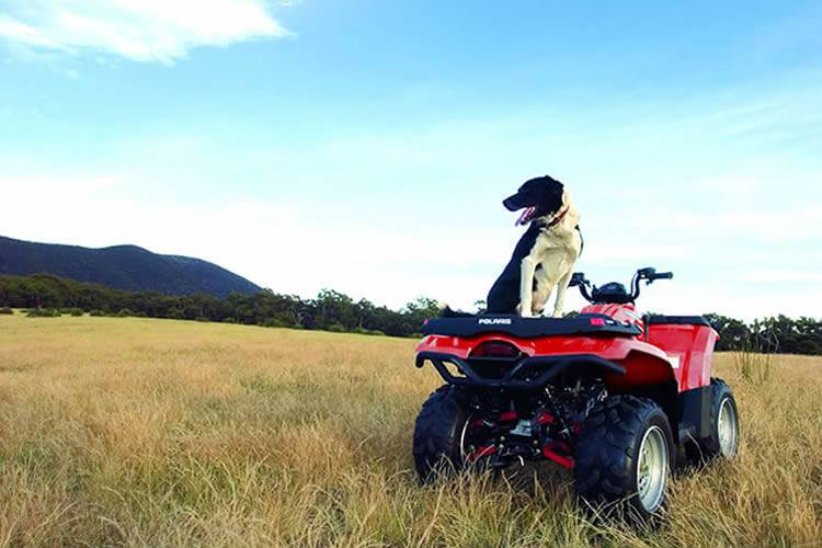 For all your genuine Polaris Parts, contact the team at Ultimate Polaris Gold Coast.