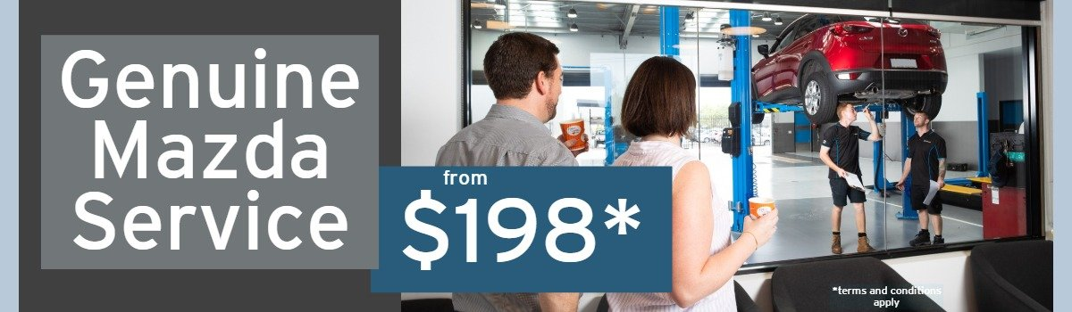 $198 Service Special Large Image