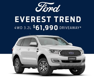 Everest Trend image