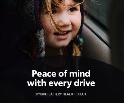 Hybrid Battery Health Check image