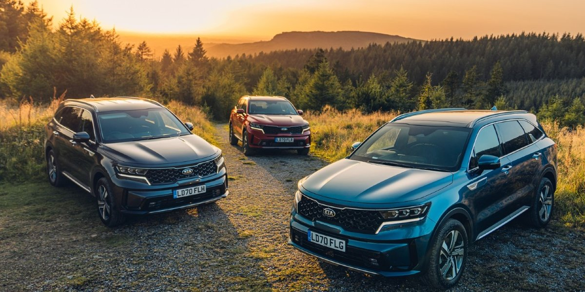 blog large image - Discover which Kia SUV is best for you