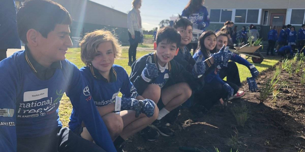 blog large image - School Tree Day Brentwood 2018