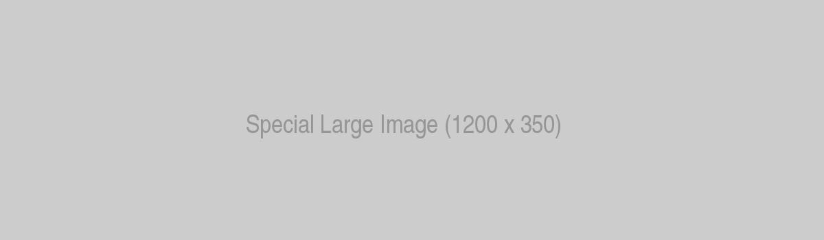 Renault Special Lorem Ipsum Dolor Sit Amet Consectetur Adipisicing Large Image
