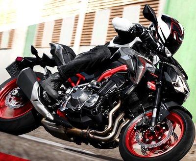 $1000 Cash Back on the Kawasaki Z 900 image