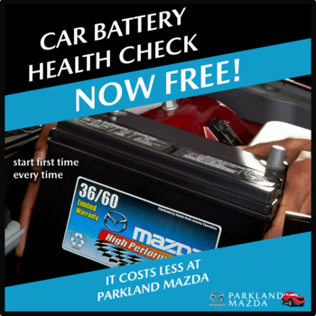 FREE Battery Check Small Image
