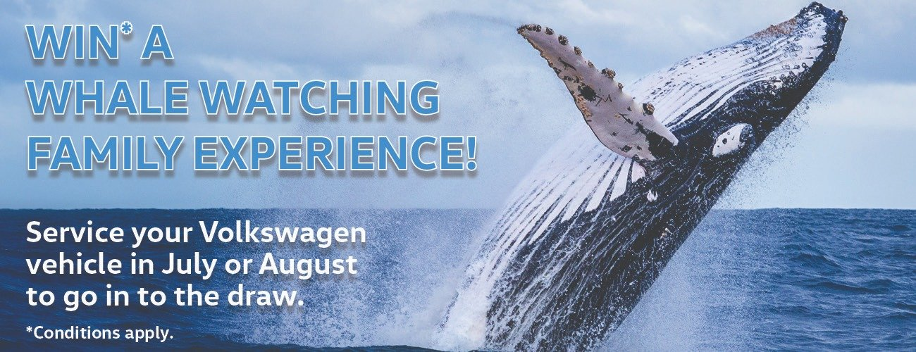 WIN* A Family Whale Watching Experience
