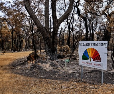 Fire danger sign standing in burnt patch of bushland image
