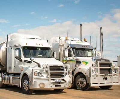 Freightliner Cascdia image
