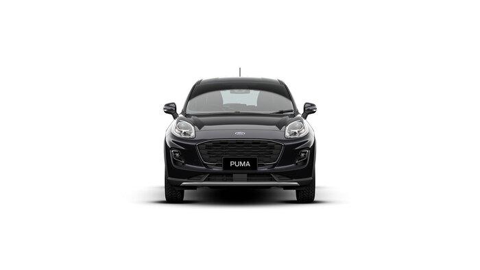 2021 Puma  INCLUDES PARK PACK