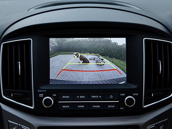 Rear view camera.