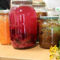 Wild Fermentation - Delicious Homemade Probiotic Food