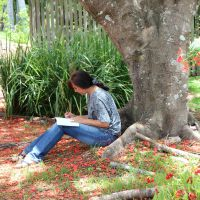 Writing For Wellbeing - Online Class