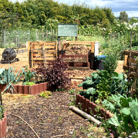Obtain A Yield - In Your Summer Garden