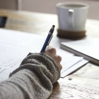 Excellence In Essay Writing